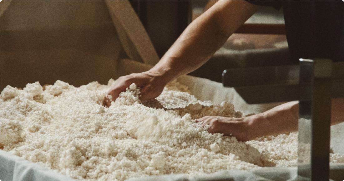 日本酒造工程の麹造り